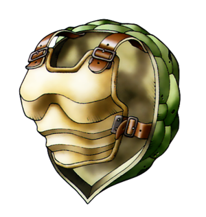 Carapace de tortue artwork.png